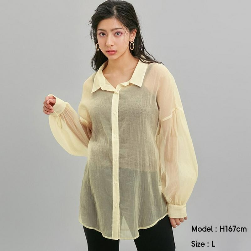 シアーボリュームスリーブシャツ(長袖)Y+E